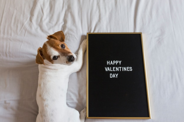 Cute dog sitting on bed with a red heart and a blackboard with happy valentines day message