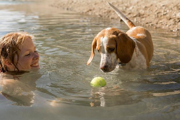 Милая собака стоит в воде и смотрит на мяч