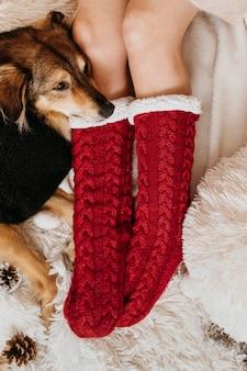 飼い主の足元にとどまるかわいい犬