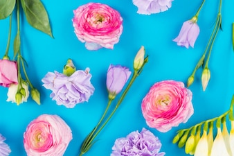 Cute flowers on colorful background