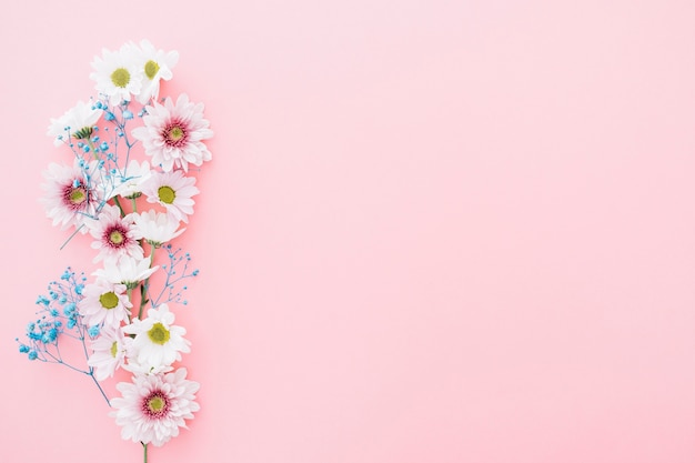 右スペースにピンクの背景にかわいい花