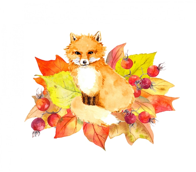 Cute fox in autumn leaves and berries. watercolor label