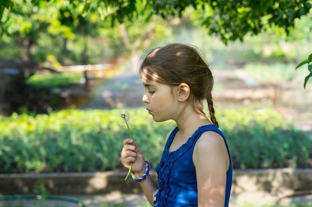 긴 조랑말 꼬리와 파란색 민소매 상의를 입은 귀여운 진짜 소녀가 연약한 퍼지 민들레를 들고 푸른 정원에서 야외에서 씨앗을 불면서