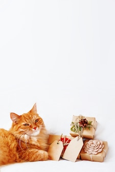 Cute ginger cat with stack of christmas presents on white .  gifts wrapped in craft paper with copy  tags.