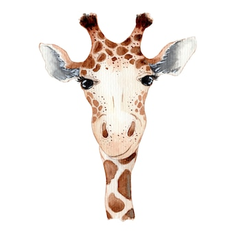 Cute giraffe cartoon watercolor illustration hand drawn animal