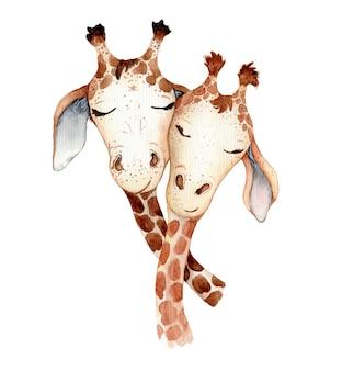 Cute giraffe cartoon watercolor illustration hand drawn animals