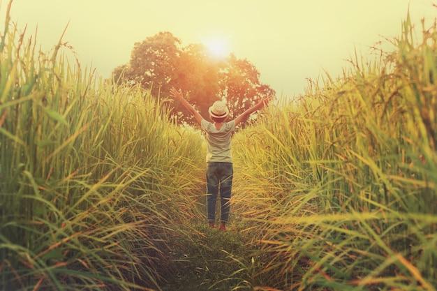 かわいい女の子、幸せ、オープン、腕、自由、水田、日没