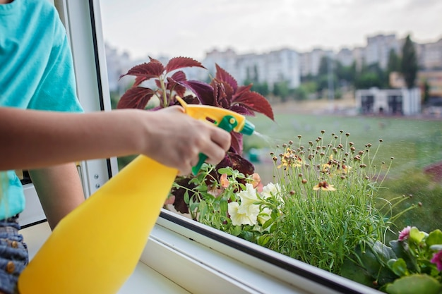 バルコニーの窓の植物の親の概念で観葉植物の世話を手伝ってかわいい女の子