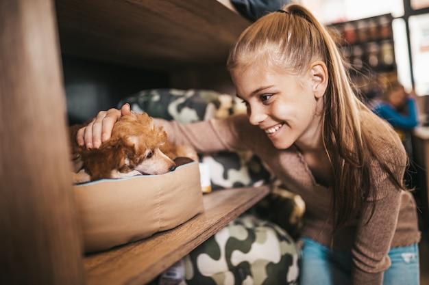 그녀의 푸들 강아지를 위해 새 침대를 시도하는 애완 동물 가게의 귀여운 소녀.
