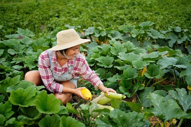 庭で最も新鮮なスカッシュとズッキーニを選ぶ帽子をかぶっているかわいい女の子。秋の野菜の収穫。
