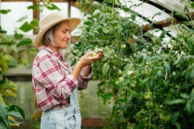 家の温室で働く帽子をかぶってかわいい女の子。秋の野菜の収穫。