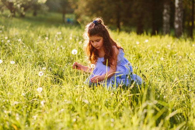 Cute girl picking dandelion flowers in the park