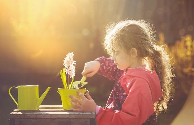 정원에 히아신스 꽃을 심고 물을 주는 귀여운 소녀. 세계 개념을 저장합니다.