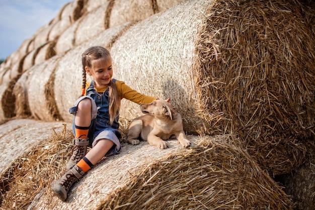 Милая девушка играет с щенком на рулонах тюков сена в поле
