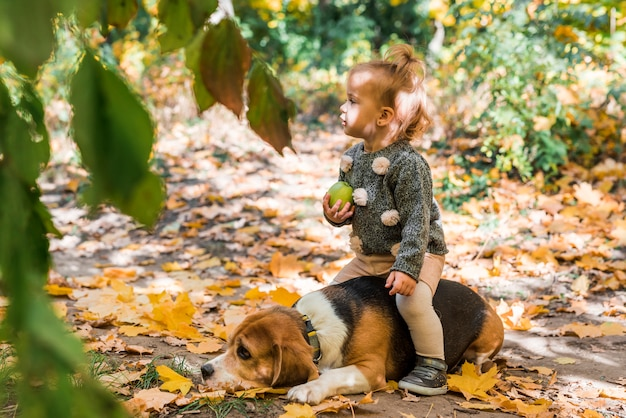 Cute girl sitting on beagle dog in forest
