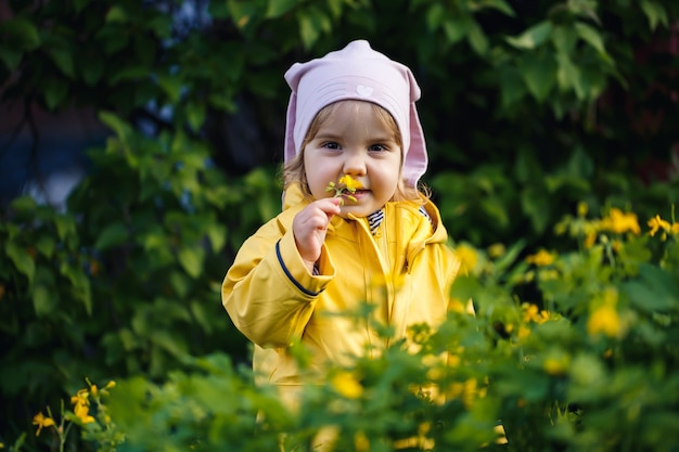 Cute girl in a yellow jacket collects flowers in a meadow. a child stood in the fresh green grass among the spring flowers. a small child makes a bouquet of the first wild yellow flowers