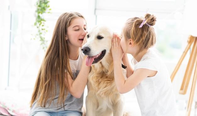 Милые девушки шепчут секреты собакам в уши в помещении