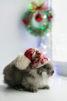 Cute gray rabbit baby in a red hat sits on a background of christmas lights and decorations