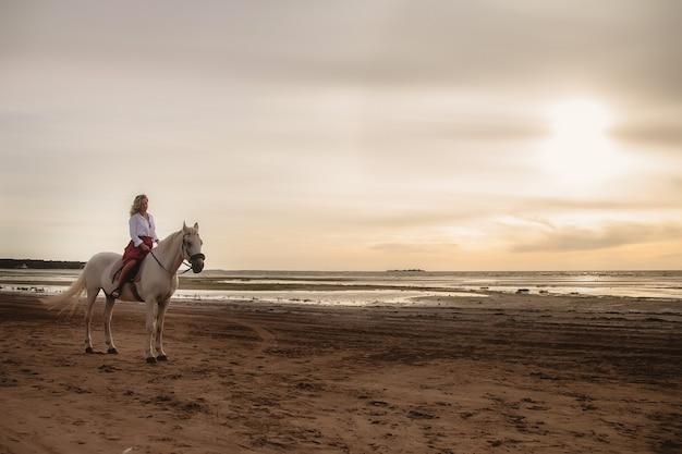 바다로 여름 해변에서 말을 타고 귀여운 행복 한 젊은 여자. 라이더 여성은 저녁 석양 빛 배경에서 자연 속에서 그녀의 말을 운전합니다. 야외 승마, 스포츠 및 레크리에이션의 개념입니다. 복사 공간