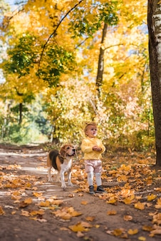 Cute innocent girl with her beagle dog standing at forest in autumn
