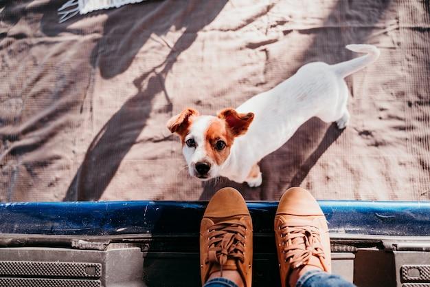 かわいいジャックラッセル犬と彼の認識できない所有者の女性がバンでリラックス。旅行のコンセプト