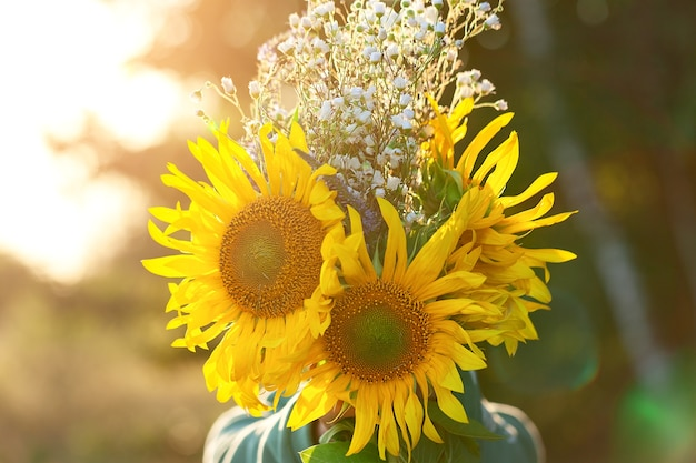 Cute kid boy hiding by bouquet of fields sunflowers in autumn sunset day. autumn concept. mother`s day and thanksgiving concept.