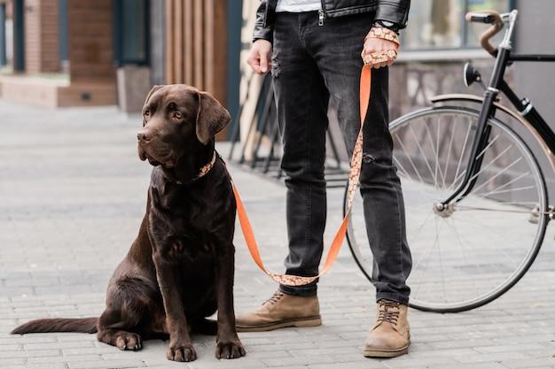 Милая собака лабрадор сидит на троттуаре со своим владельцем, стоящим рядом, пока оба отдыхают в городе