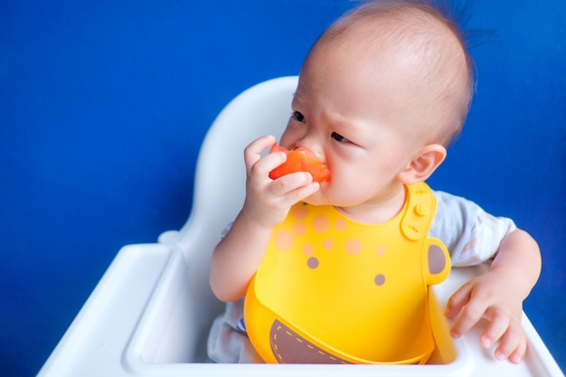 Cute little asian toddler baby boy holding and eating red tomato against a blue wall