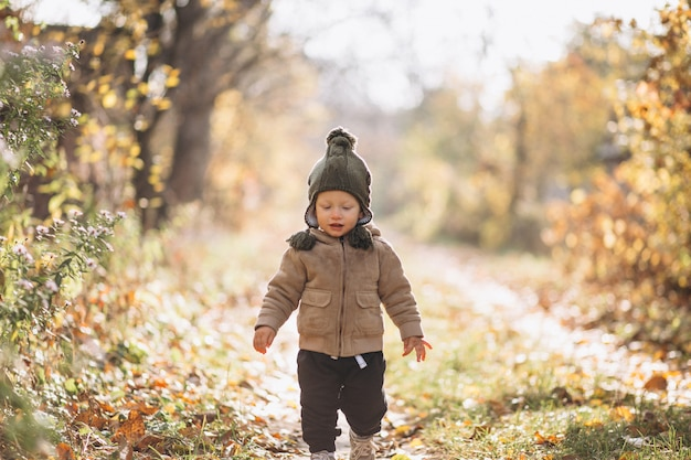Cute little boy in an autumn park