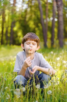 Cute little boy blowing dandelion.