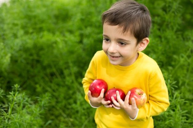 晴れた日に緑の草の背景でリンゴを摘むかわいい男の子。健康的な栄養。