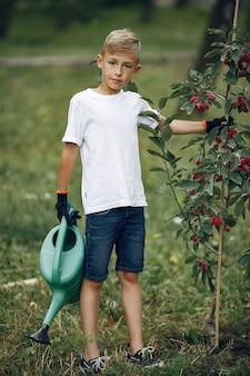 公園で木を植えるかわいい男の子
