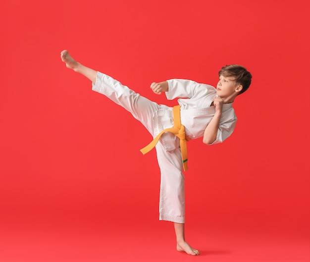 Cute little boy practicing karate