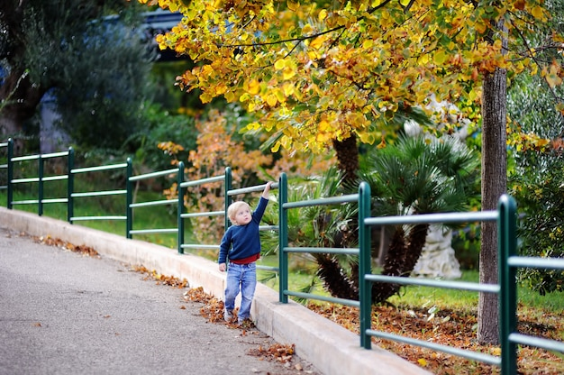 Cute little boy walking in park on nice autumn day. stylish casual clothes for children