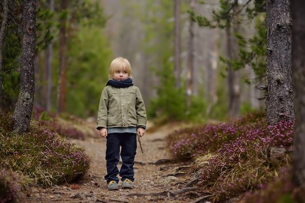 Cute little boy walks in swiss national park on spring. hiking with little kids.