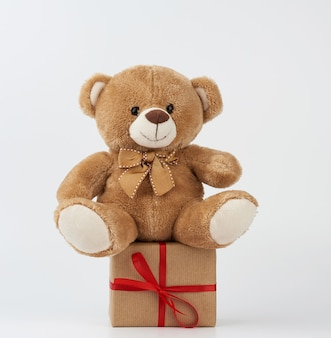 Cute little brown teddy bear holds a brown box with a red ribbon