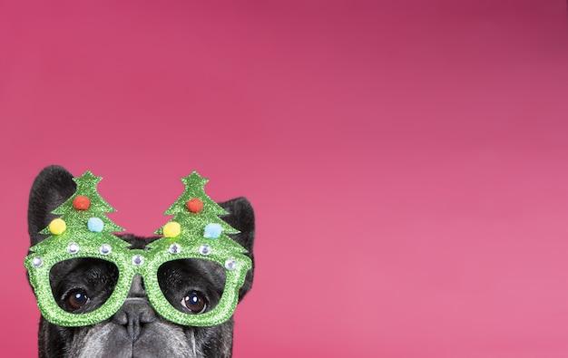 クリスマスをテーマにした眼鏡をかけているかわいい小さなブルドッグ