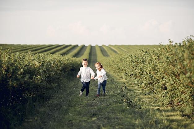 Cute little children in a spring field