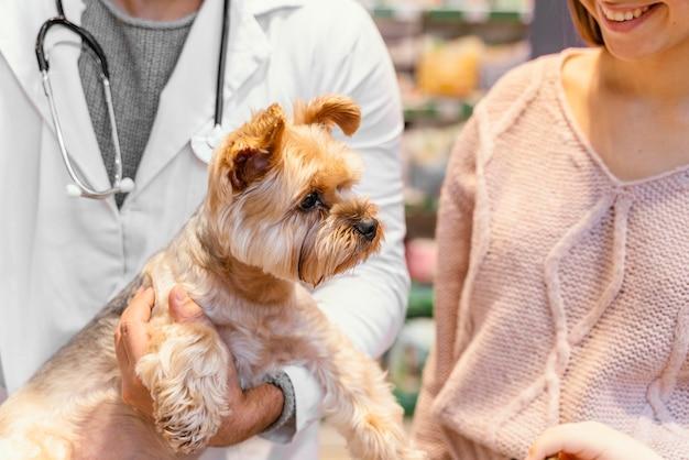 Милая маленькая собачка в зоомагазине с владельцем
