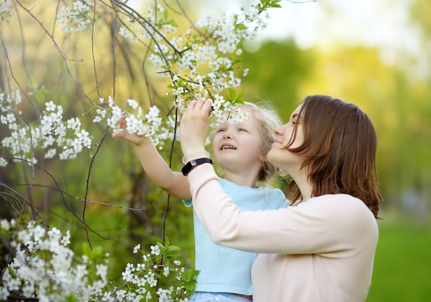 Cute little girl in the arms of her beautiful mother in cherry or apple orchard during flowering.