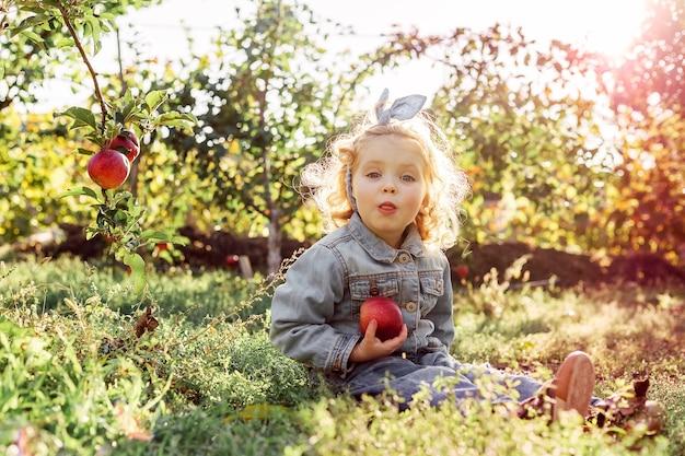 かわいい女の子の子供は舌を見せ、秋のリンゴ園で熟した有機赤いリンゴを持って変な顔をします。健康食品の栄養。収穫コンセプト、りんご狩り、収穫。