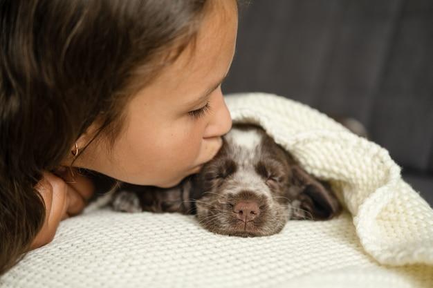 귀여운 소녀가 러시안 스패니얼 갈색 강아지를 끌어안고 소파에 있는 흰색 담요 아래에 키스합니다. 애완 동물 관리와 친절한 개념. 인간과 동물의 사랑과 우정.