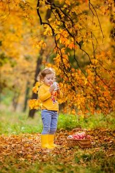 Милая маленькая девочка собирает яблоки в зеленой траве
