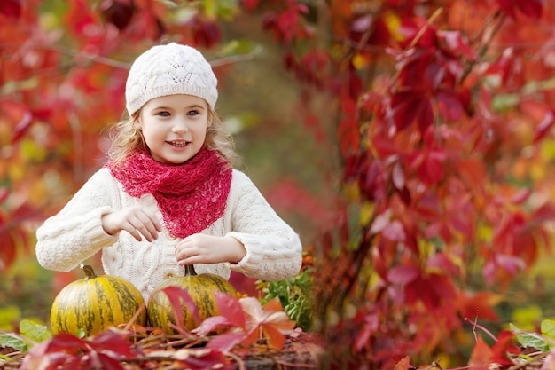 가 공원에서 호박을가지고 노는 귀여운 소녀. 어린이를 위한 가을 활동. 가족을 위한 할로윈과 추수감사절 시간.