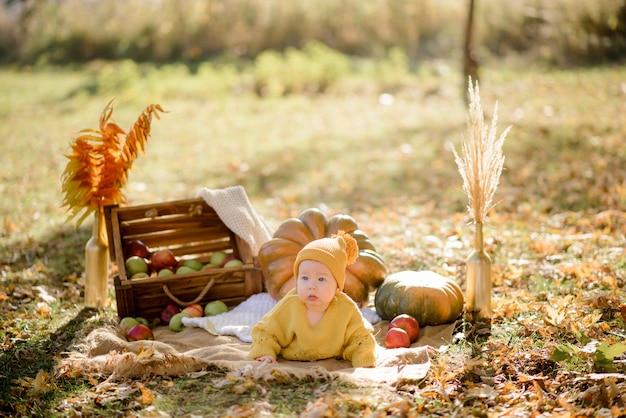 カボチャの上に座って、秋の森で遊ぶかわいい女の子