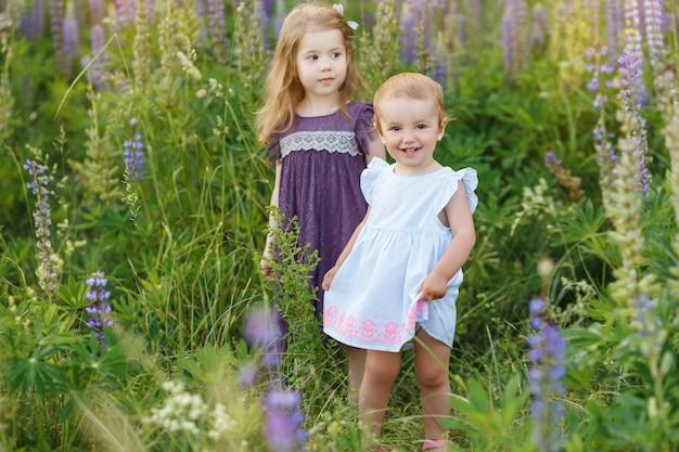 歩いているドレスを着たかわいい、小さな女の子。子供たちは屋外で遊ぶ