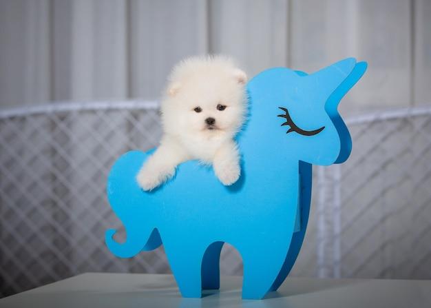 장난감 말 유니콘에 앉아 귀여운 작은 강아지