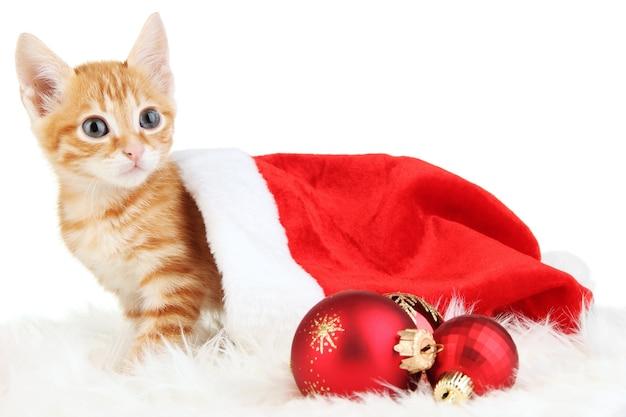 Милый маленький рыжий котенок в шляпе санта, изолированные на белом