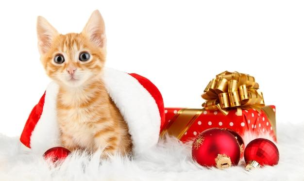 Милый маленький рыжий котенок в шляпе санта изолированы