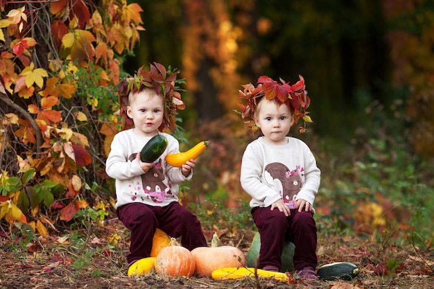 Cute little  twin girls playing with vegetable marrow in autumn park. halloween and thanksgiving time fun for family.